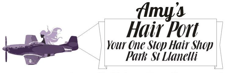 Amys Hairport logo